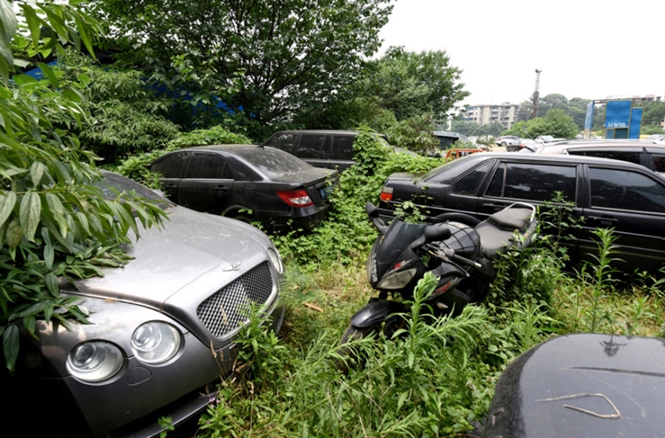 "Pic shows: Abandoned vehicles in the 'car graveyard'. Hundreds of vehicles have been wasting away in a parking lot in China where the cars are now overgrown with weeds and trees. Hidden in the undergrowth are also expensive luxury vehicles such as Mercedes-Benzes, Land Rovers, and Bentleys – two of which are thought to be 3 million RMB (316,890 GBP) each. According to reports from the lot in Chengdu, capital of south-west China's Sichuan Province, the 200 or so cars have been abandoned there for years, and many are already old enough to be scrapped Local authorities said that many of the expensive vehicles have been kept in the lot because they were involved in complicated criminal cases currently under investigation. Due to the complex nature of the cases, which involve a number of government departments, the cars have been essentially impounded in the lot and have been allowed to disappear amongst the foliage. Amongst the Audis and Mercedes-Benzes are also motorcycles or much older and cheaper vehicles which are also due to be scrapped. But authorities have yet to handle the sedans in what has now been described as a ""car graveyard"". Several similar cars seized by authorities in the past had been auctioned off last year, reports said, after local courts in Chengdu were given permission to sell cars from solved cases to the public. But the majority of the vehicles are still wasting away as different government departments work together to resolve the criminal cases. (ends)"