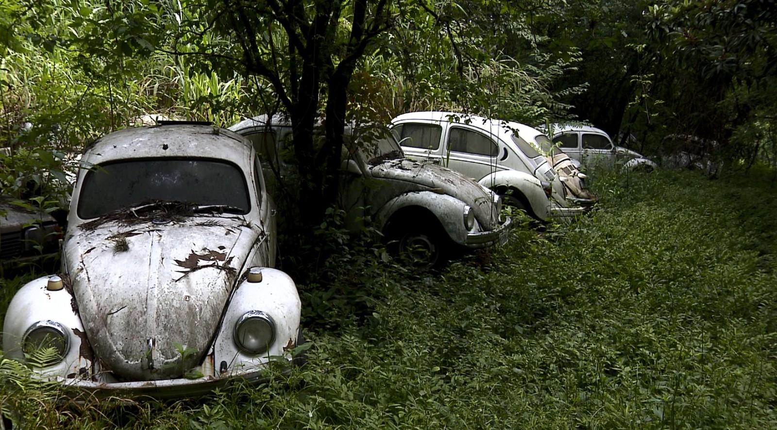 carros colecao chacara valinhos