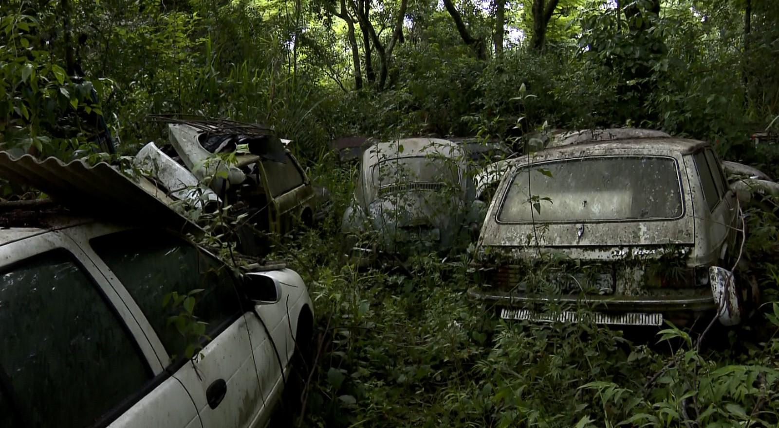 carros colecao chacara valinhos2