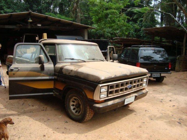ford f 1000 ficou guardado por anos 03