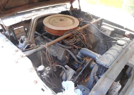 carro antigo Shelby GT350 1965 04
