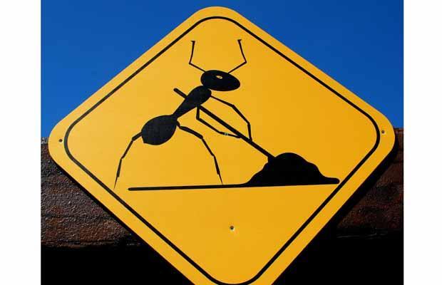 unusual road signs 08
